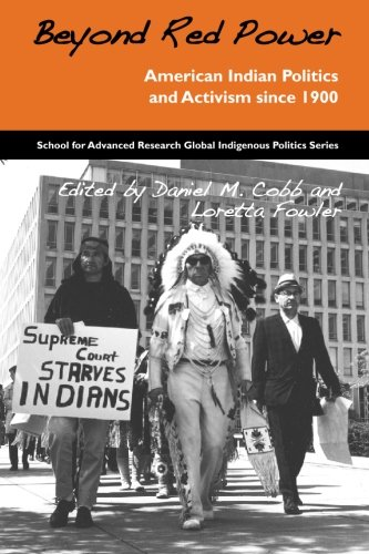 Beyond Red Power New Perspectives on American Indian Politics and Activism  2007 9781930618862 Front Cover