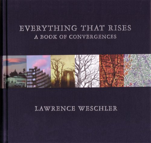 Everything That Rises A Book of Convergences  2009 edition cover