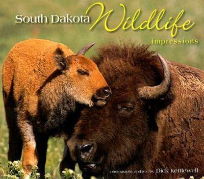 South Dakota Wildlife Impressions   2006 edition cover
