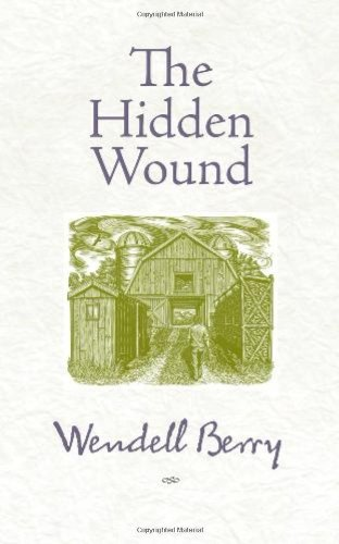 Hidden Wound   2010 edition cover