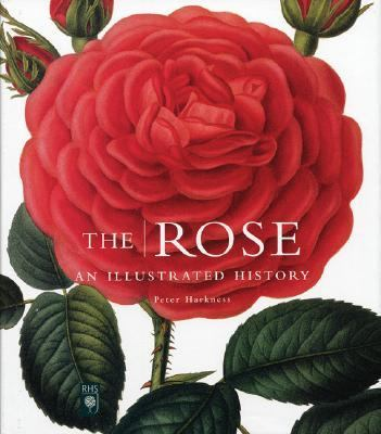 Rose An Illustrated History  2003 9781552977873 Front Cover