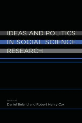 Ideas and Politics in Social Science Research   2010 edition cover