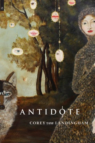 Antidote   2013 edition cover