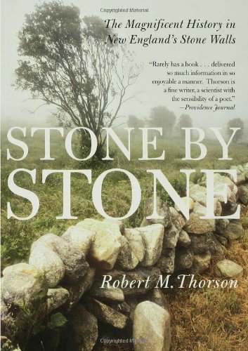 Stone by Stone The Magnificent History in New England's Stone Walls N/A edition cover