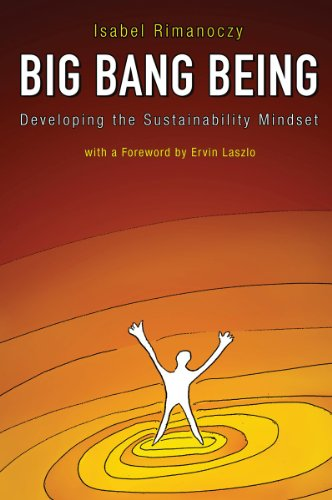 Big Bang Being Developing the Sustainability Mindset  2013 edition cover