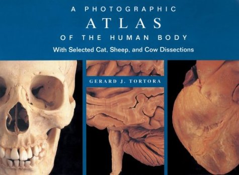 Photographic Atlas of the Human Body With Selected Cat, Sheep, and Cow Dissections  2000 edition cover