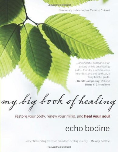 My Big Book of Healing Restore Your Body, Renew Your Mind, and Heal Your Soul  2008 edition cover