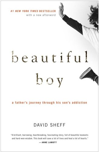 Beautiful Boy A Father's Journey Through His Son's Addiction  2009 9780547203881 Front Cover