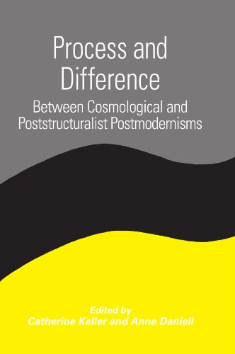 Process and Difference Between Cosmological and Poststructuralist Postmodernisms  2002 edition cover
