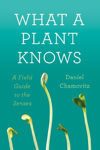 What a Plant Knows A Field Guide to the Senses N/A edition cover
