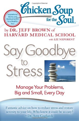 Chicken Soup for the Soul: Say Goodbye to Stress Manage Your Problems, Big and Small, Every Day N/A 9781935096887 Front Cover
