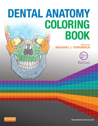 Dental Anatomy Coloring Book  2nd edition cover