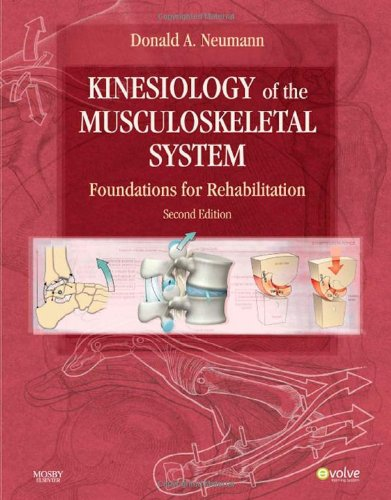 Kinesiology of the Musculoskeletal System Foundations for Rehabilitation 2nd 2010 edition cover