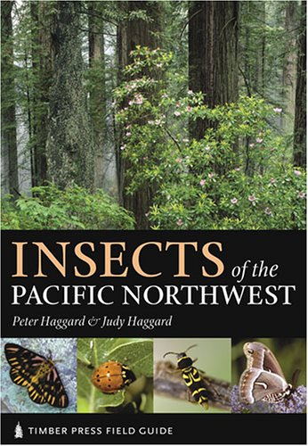 Insects of the Pacific Northwest   2006 edition cover