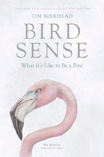 Bird Sense What It's Like to Be a Bird N/A 9781620401897 Front Cover