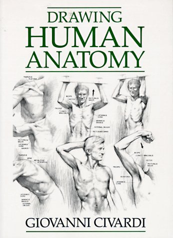 Drawing Human Anatomy 1st 1995 edition cover