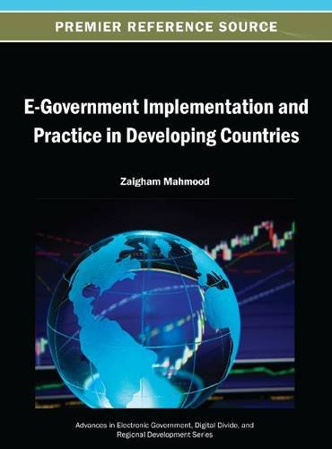 E-Government Implementation and Practice in Developing Countries:   2013 edition cover