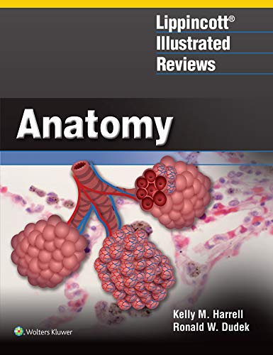 Cover art for Lippincott Illustrated Reviews: Anatomy, 1st Edition