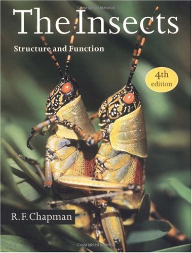 Insects Structure and Function 4th 1998 (Revised) 9780521578905 Front Cover