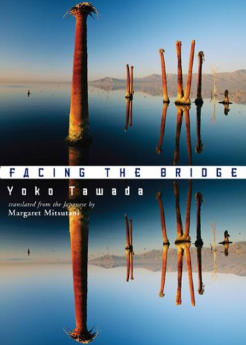 Facing the Bridge   2007 edition cover