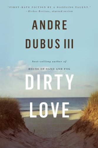 Dirty Love   2014 edition cover