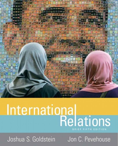 International Relations  5th 2010 (Brief Edition) edition cover