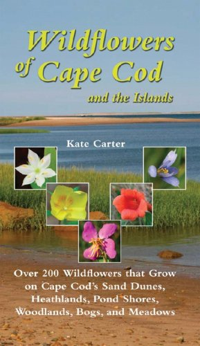 Wildflowers of Cape Cod and the Islands   2008 9780881507911 Front Cover