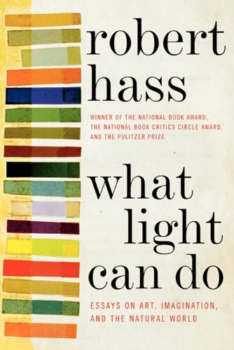 What Light Can Do Essays on Art, Imagination, and the Natural World  2013 edition cover