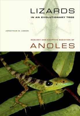 Lizards in an Evolutionary Tree Ecology of Adaptive Radiation of Anoles  2009 9780520255913 Front Cover