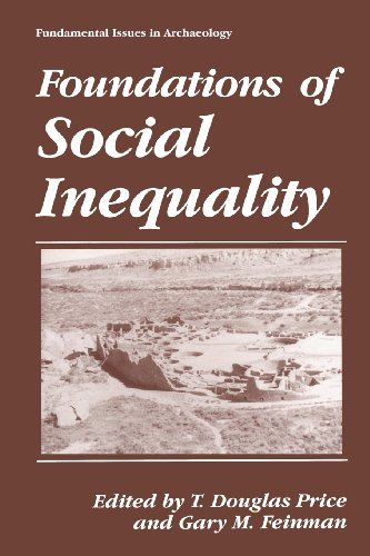 Foundations of Social Inequality   1995 9781489912916 Front Cover