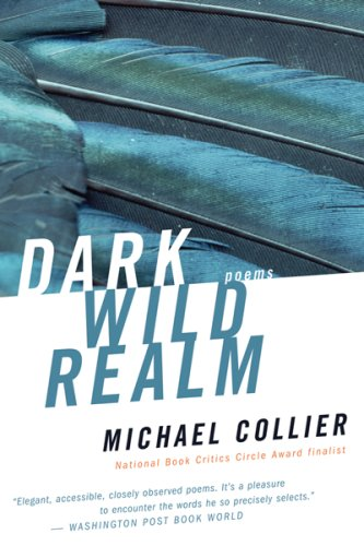 Dark Wild Realm   2006 9780618919918 Front Cover