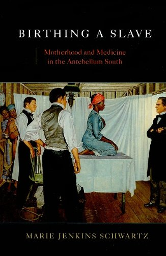 Birthing a Slave Motherhood and Medicine in the Antebellum South  2006 edition cover