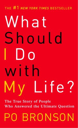 What Should I Do with My Life? The True Story of People Who Answered the Ultimate Question N/A edition cover