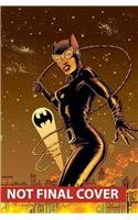 Catwoman Vol. 3: under Pressure   2014 9781401245924 Front Cover