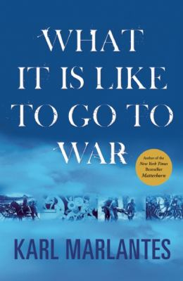 What It Is Like to Go to War   2011 edition cover