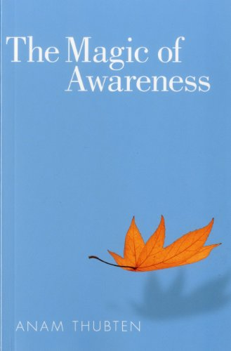 Magic of Awareness   2012 9781559393928 Front Cover