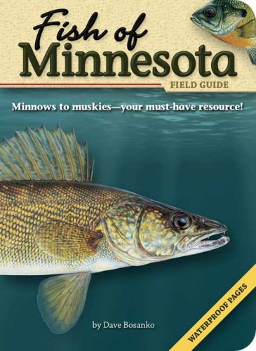 Fish of Minnesota Field Guide  N/A edition cover