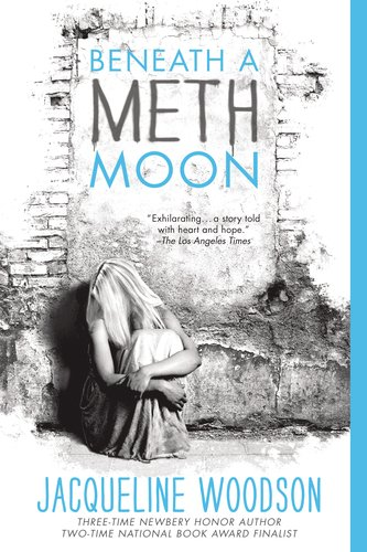 Beneath a Meth Moon An Elegy N/A edition cover