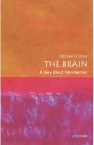 Brain   2002 edition cover