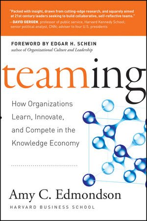 Teaming How Organizations Learn, Innovate, and Compete in the Knowledge Economy  2008 edition cover