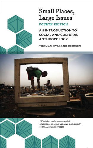 Small Places, Large Issues - Fourth Edition An Introduction to Social and Cultural Anthropology 4th 9780745335933 Front Cover