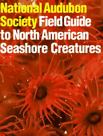 North American Seashore Creatures   1981 edition cover