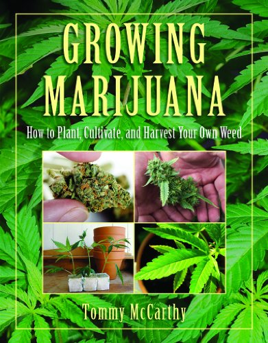 Growing Marijuana How to Plant, Cultivate, and Harvest Your Own Weed N/A 9781616080938 Front Cover