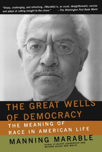 Great Wells of Democracy The Meaning of Race in American Life  2003 9780465043941 Front Cover