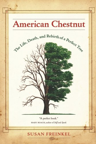 American Chestnut The Life, Death, and Rebirth of a Perfect Tree  2009 edition cover