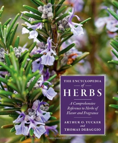 Encyclopedia of Herbs A Comprehensive Reference to Herbs of Flavor and Fragrance 2nd 2009 edition cover