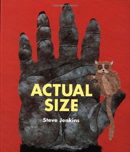 Actual Size   2004 (Teachers Edition, Instructors Manual, etc.) edition cover