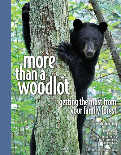 More Than a Woodlot Getting the Most from Your Family Forest N/A edition cover