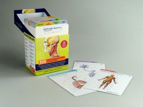 Anatomy Flashcards  N/A edition cover
