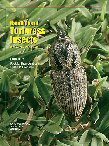 Handbook of Turfgrass Insects  2nd 2012 9780977620944 Front Cover